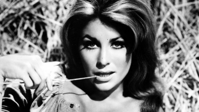 Michele Carey Measurements Bra Size Height Weight