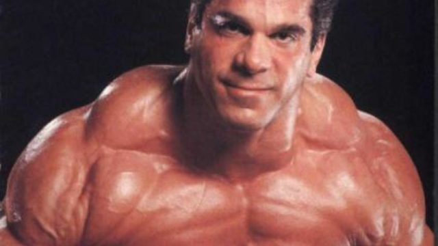 Lou Ferrigno Measurements Bra Size Height Weight
