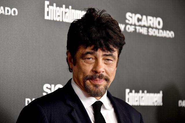Benicio Del Toro Measurements Bra Size Height Weight